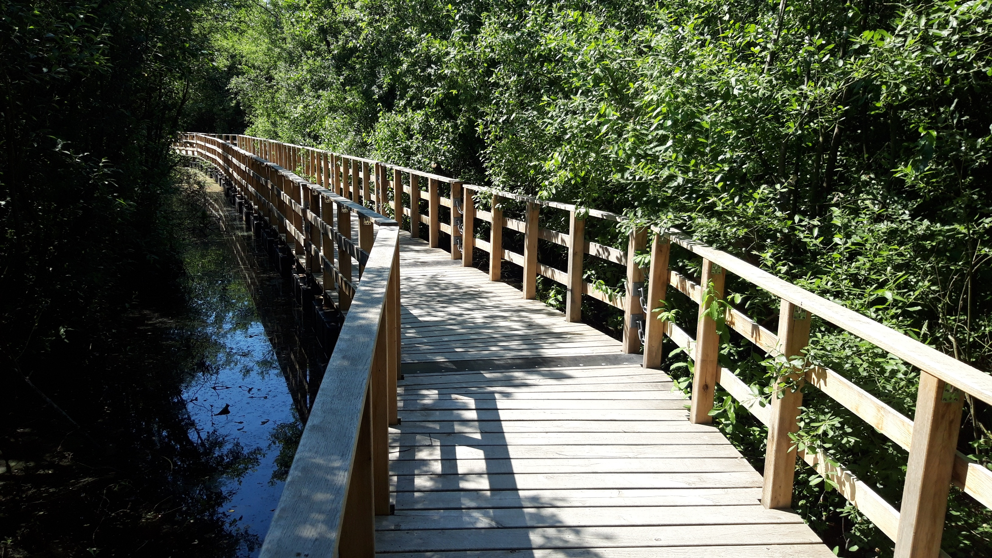 Moorbrücke